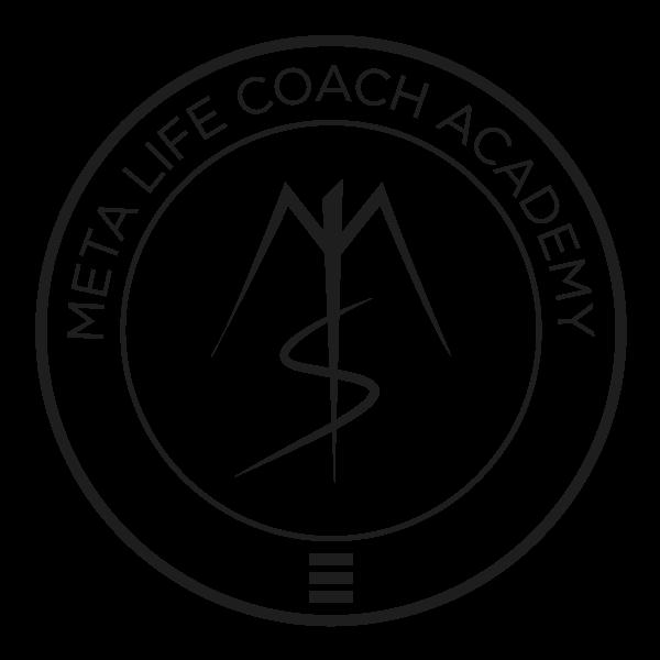 meta-academy